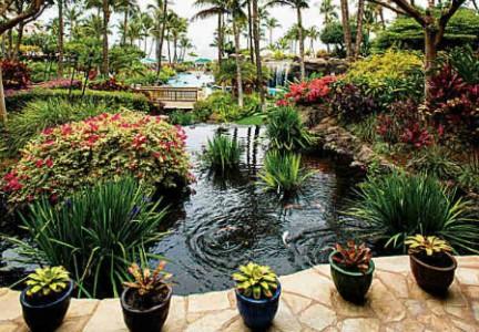 Maui-Ocean-Club-Lahaina-and-Napili-Towers33