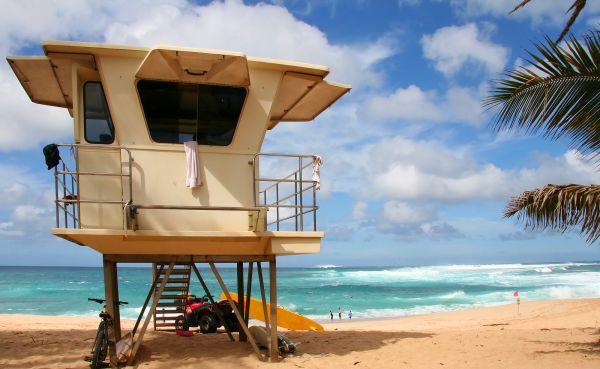 m-Hawaii-Beach-353891